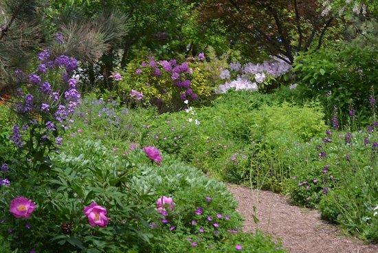 linden-gardens.jpg