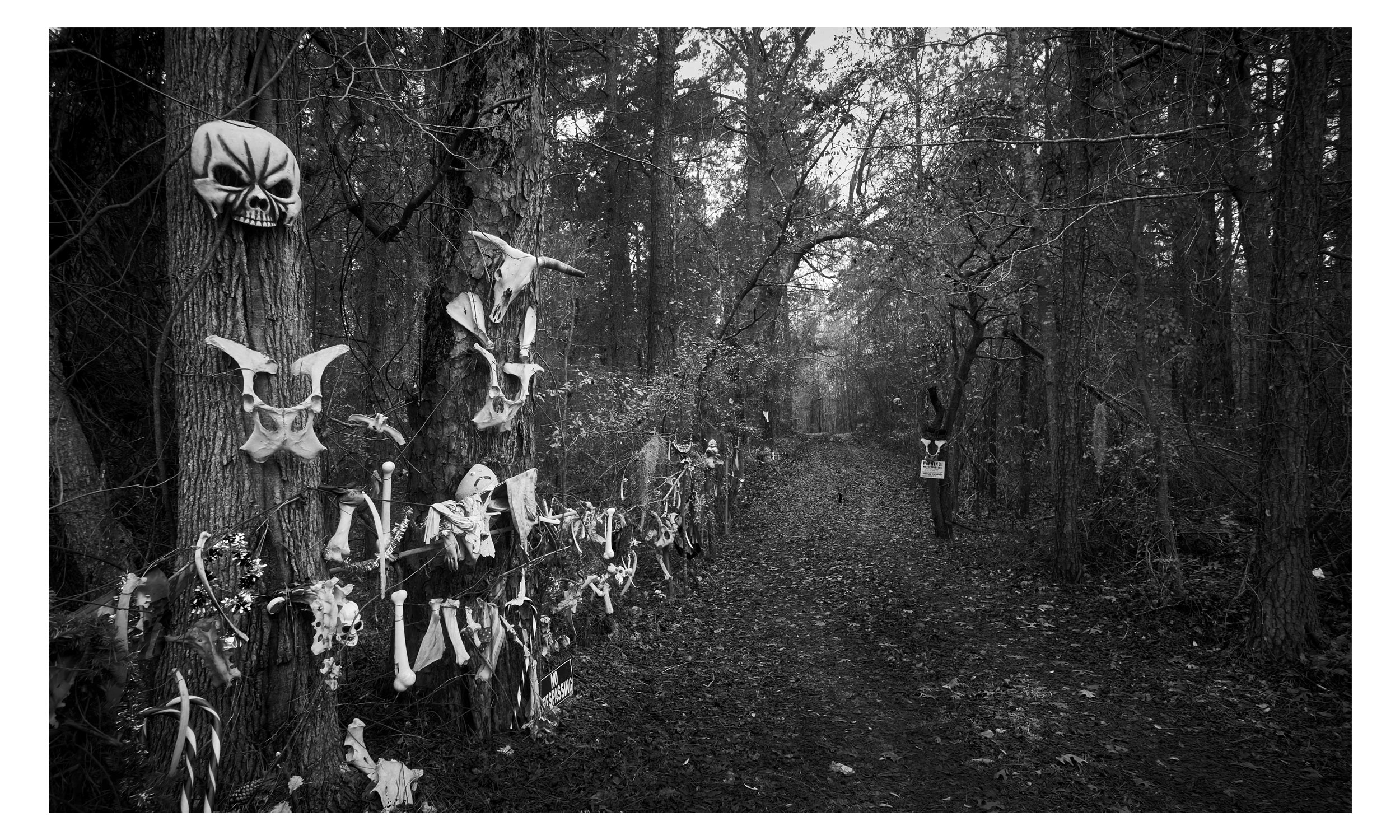 """South Carolina , archival ink print, 20"""" x 26"""", $1000    Contact us for purchase"""