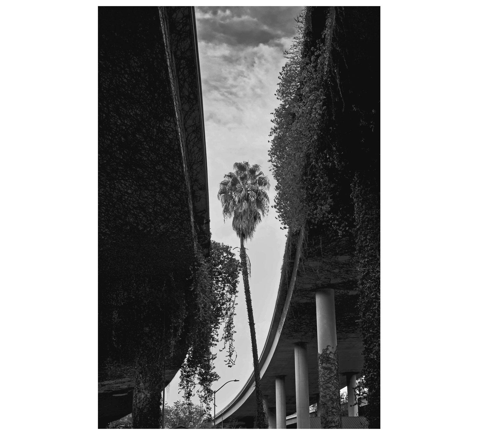 California 3