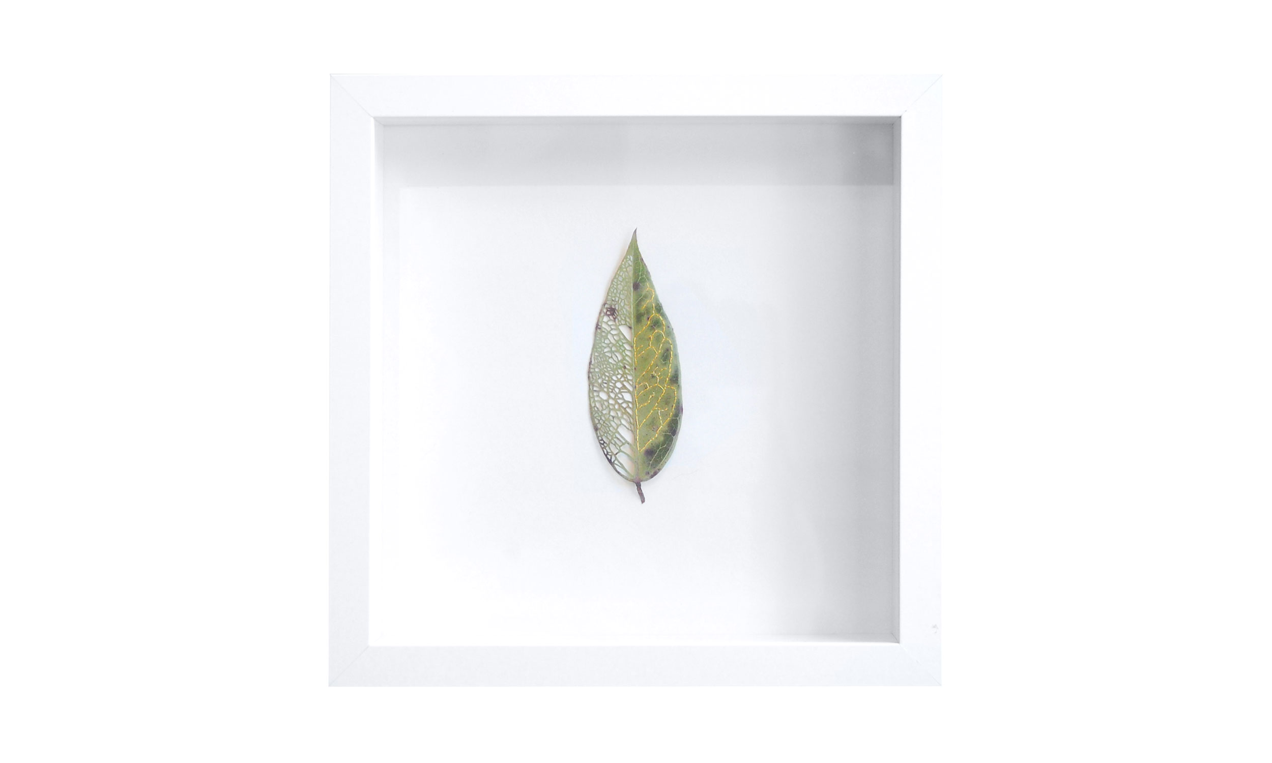 "Leaf Quartet I , hand cut and stitched leaf, 10"" x 10"", $400   Contact us for purchase"