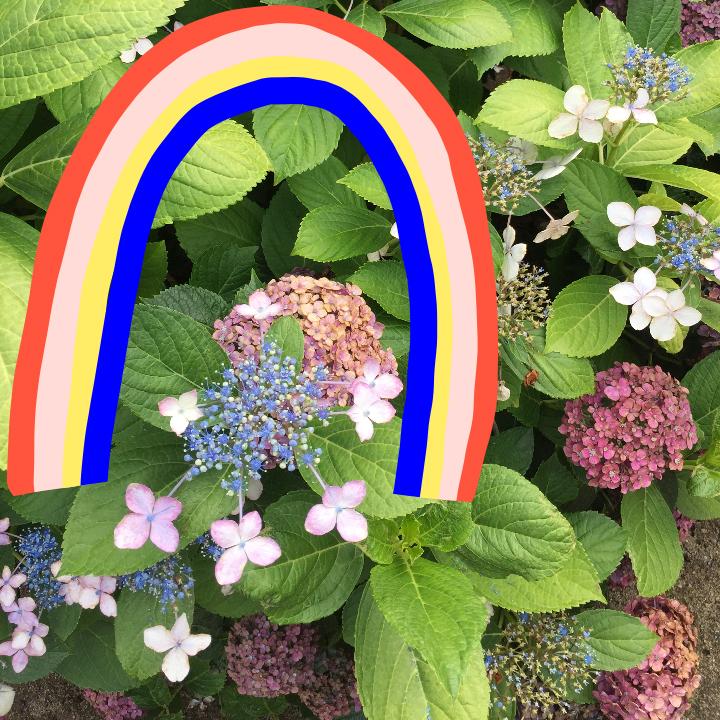 quirk_pride month_img copy.jpg