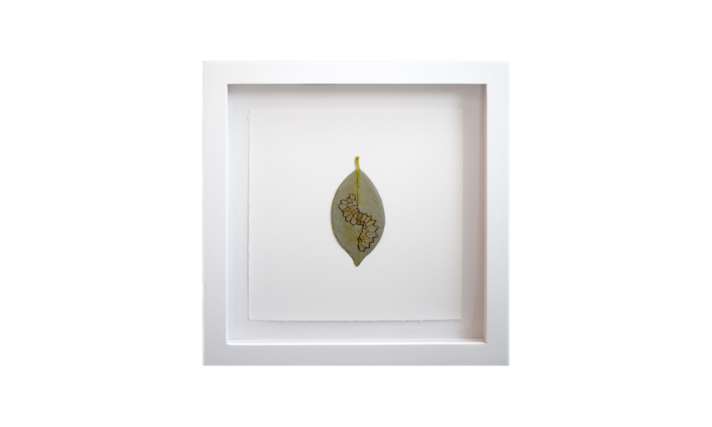 """Honeycombs , hand stitched camellia leaves, 11.25"""" x 11.25"""" each, framed, $ 1,800 (set of three)    Contact us for purchase"""