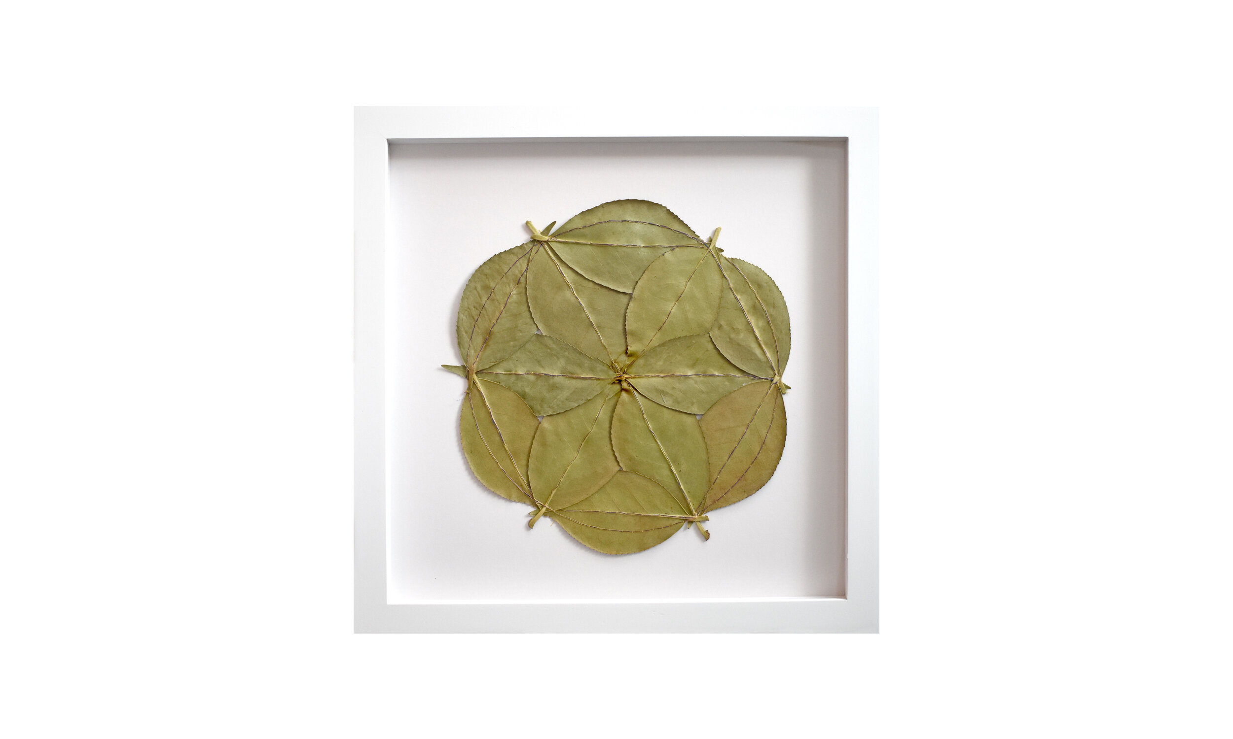 """Seed of Life,  hand stitched camellia leaves, 13.25"""" x 13.25"""", $ 1,200    Contact us for purchase"""