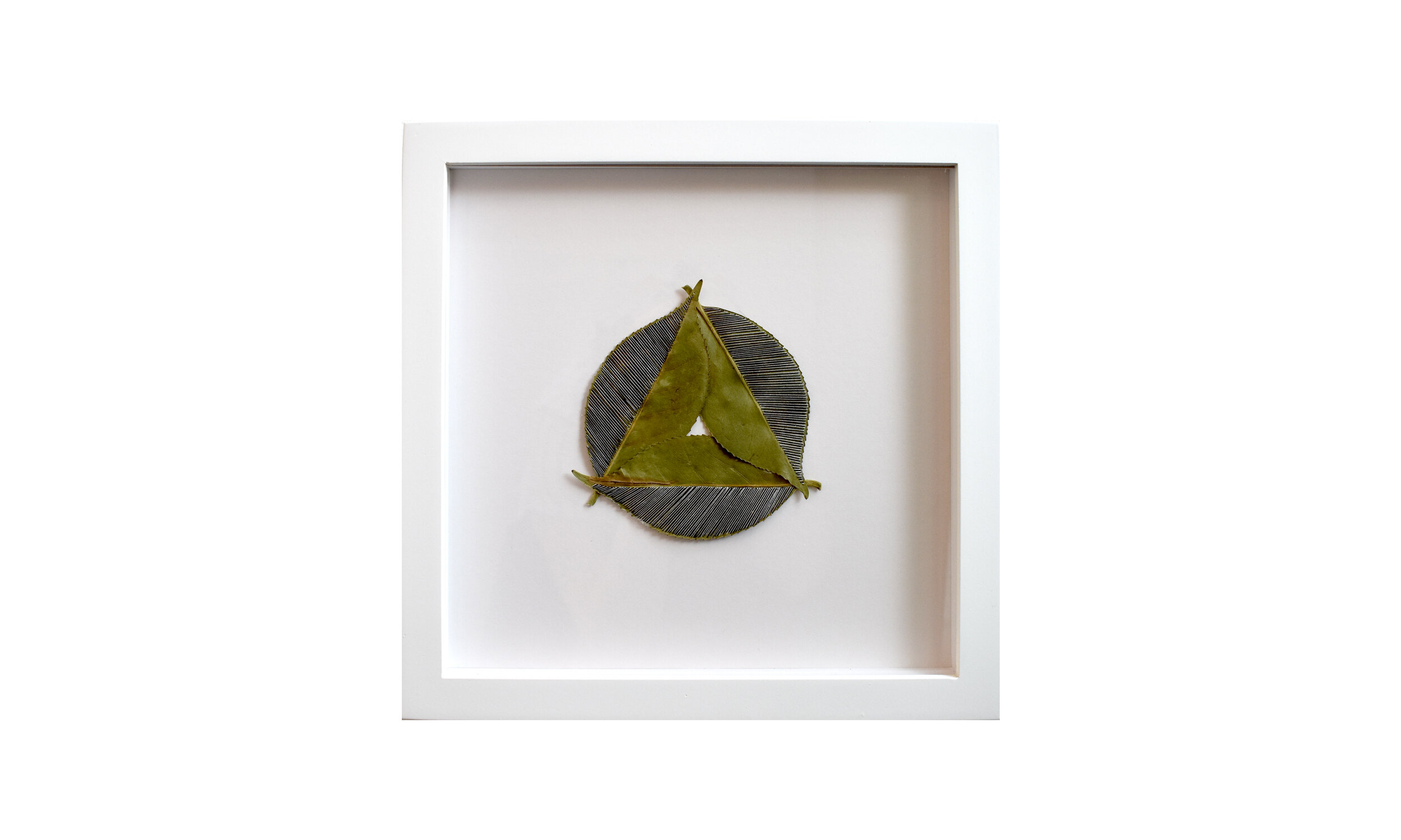 """Inherent,  stitched camellia leaves, 11.25"""" x 11.25"""", framed $ 850    Contact us for purchase"""