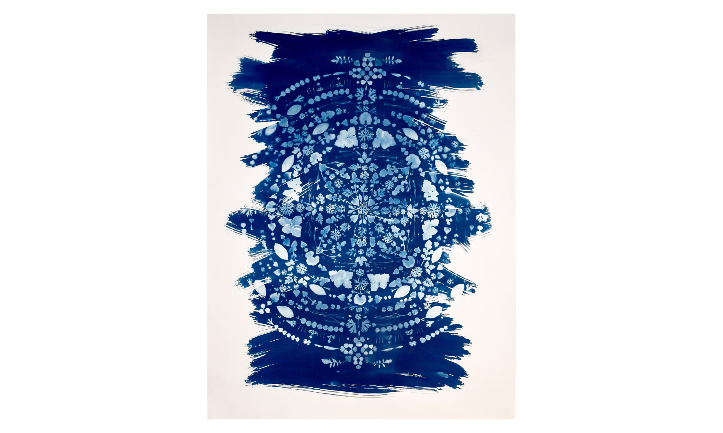 Earthly Mandala II,  cyanotype on paper 42 x 55 inches, unframed $ 3,500    Contact us for purchase