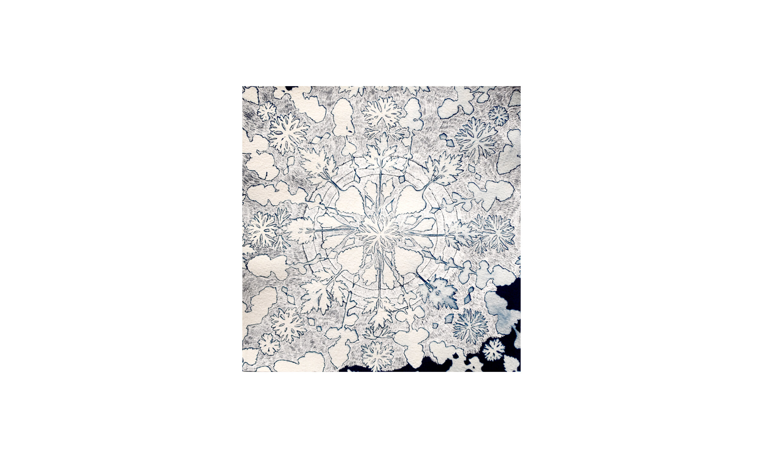 Mandala III,  ink on cyanotype on paper, unframed, $450    Contact us for purchase