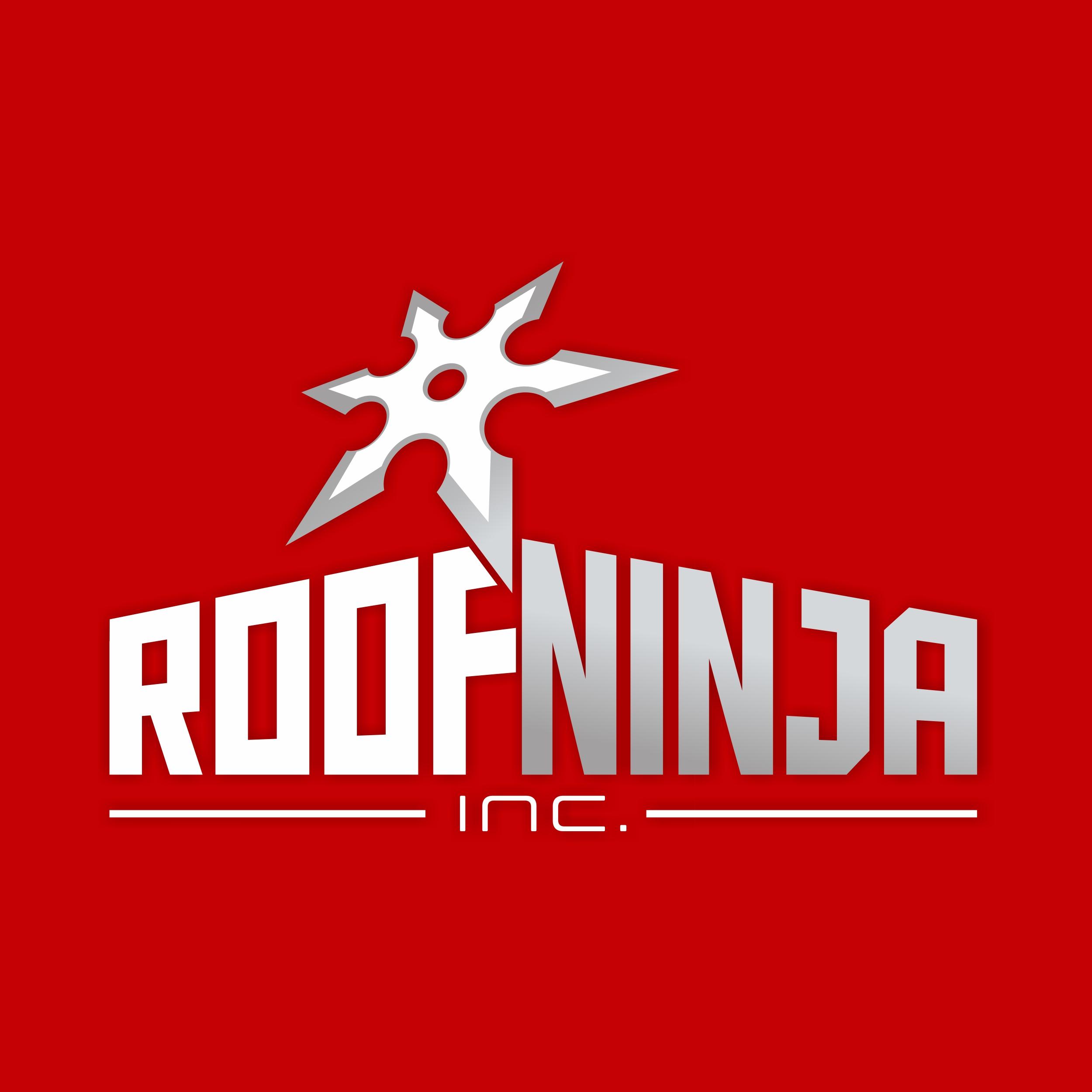Roof Ninja_BC.jpg