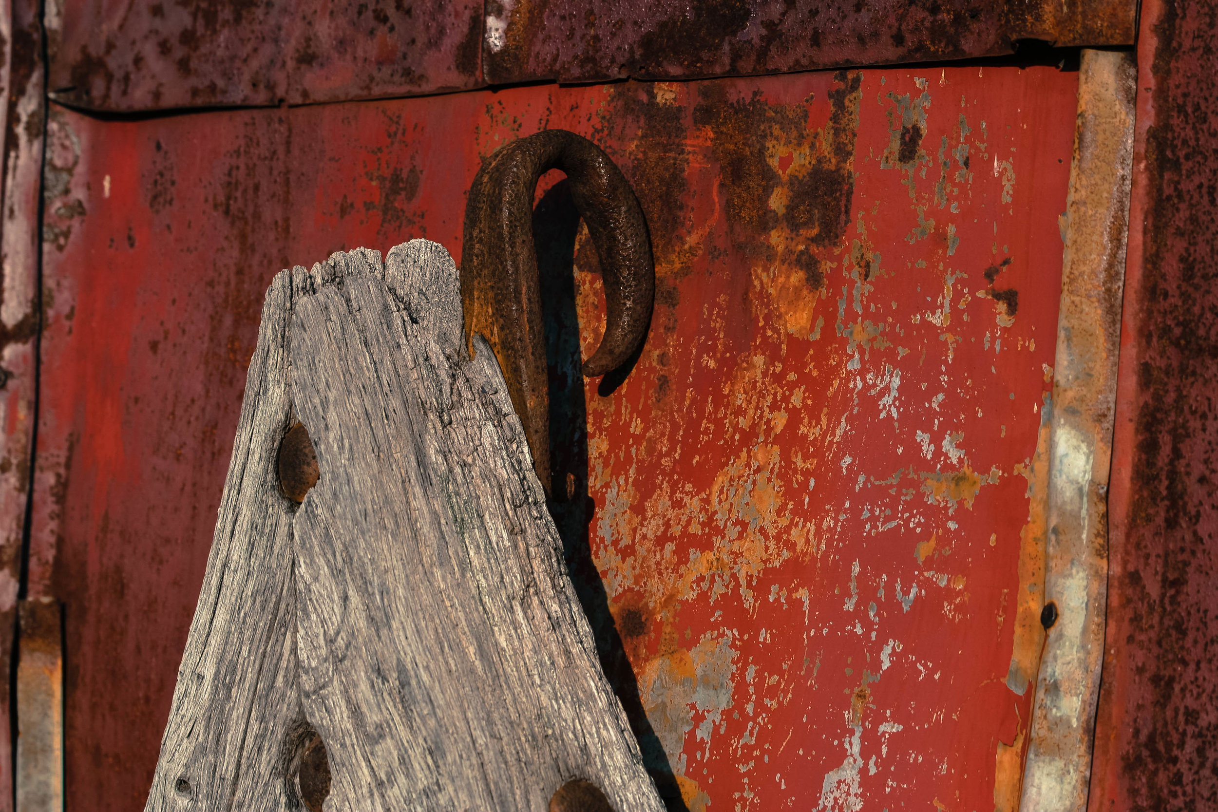A sort of tiller, to be horse drawn, with black-smithed railroad spike components. Leaning against an old chicken coop that belonged to the black tenant farmers.