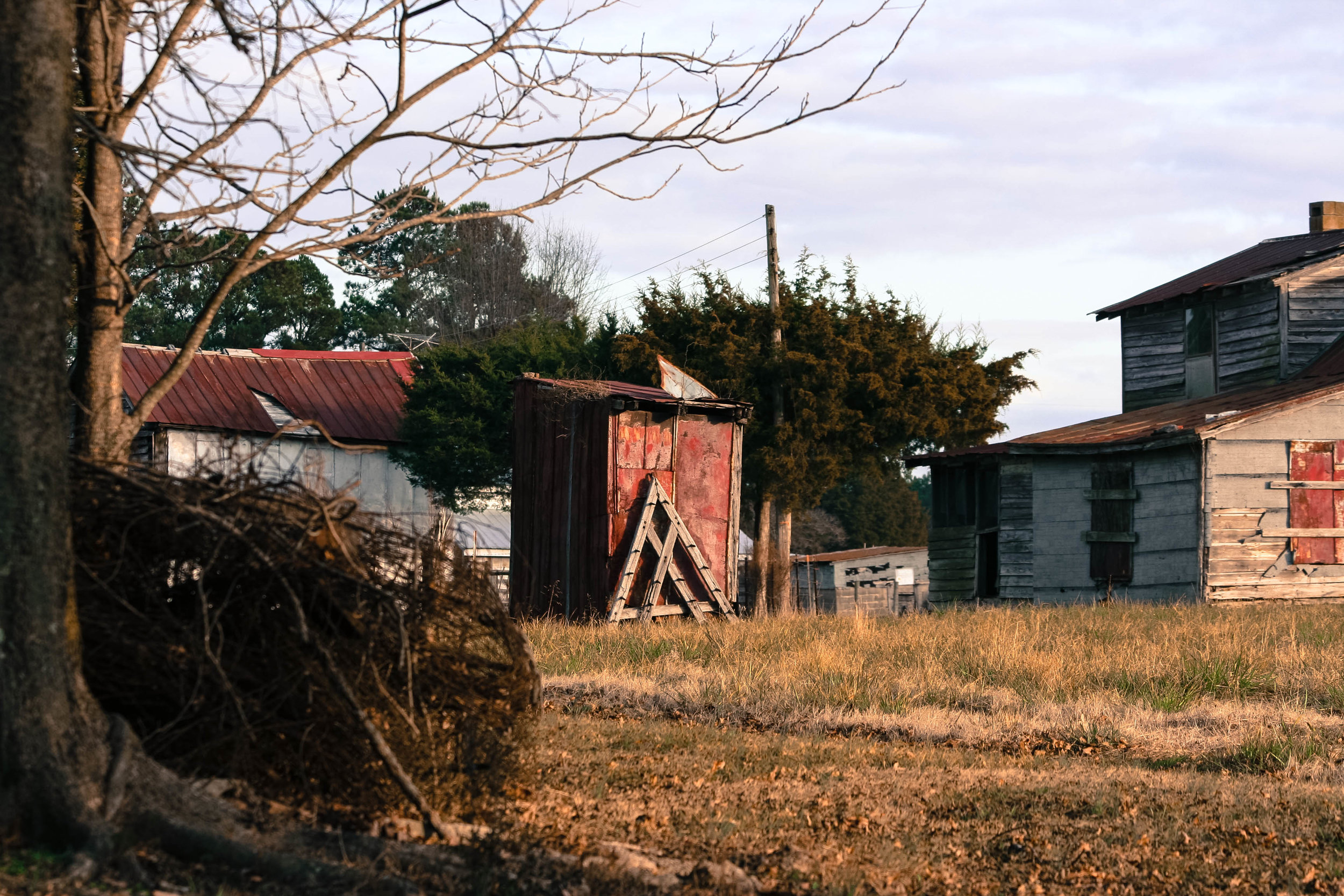 The house to the right was lived in by black tenant farmers. To the left is the old chicken coop. I am assuming that tiller is made of cedar because it seems like it could still be used today.