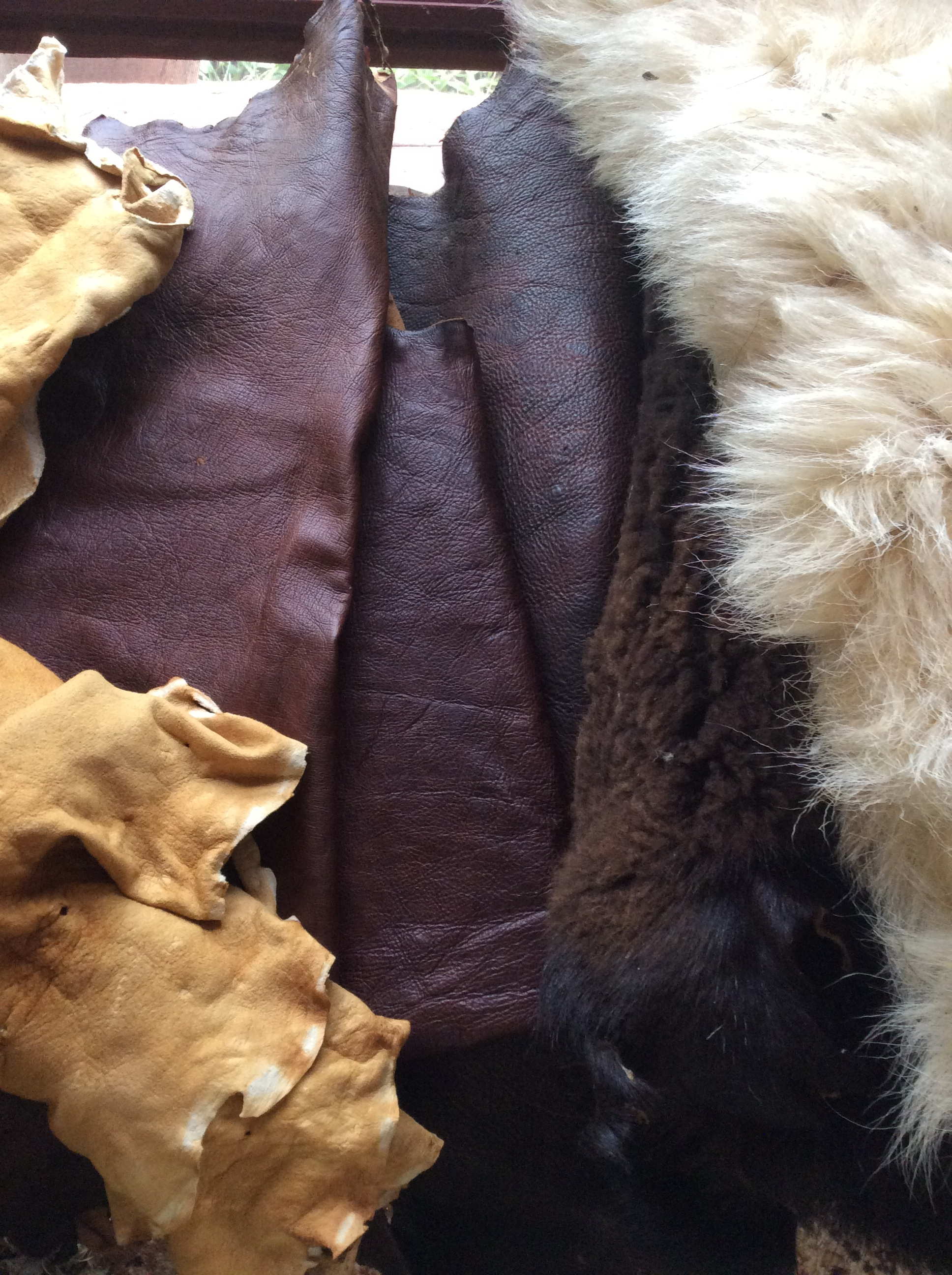From left to right: smoked brain tanned buckskin, Coffee/Tea/Tanoak tanned leather, Hemlock/Sumac/Tanoak Tanned leather, brain tanned sheepskins.