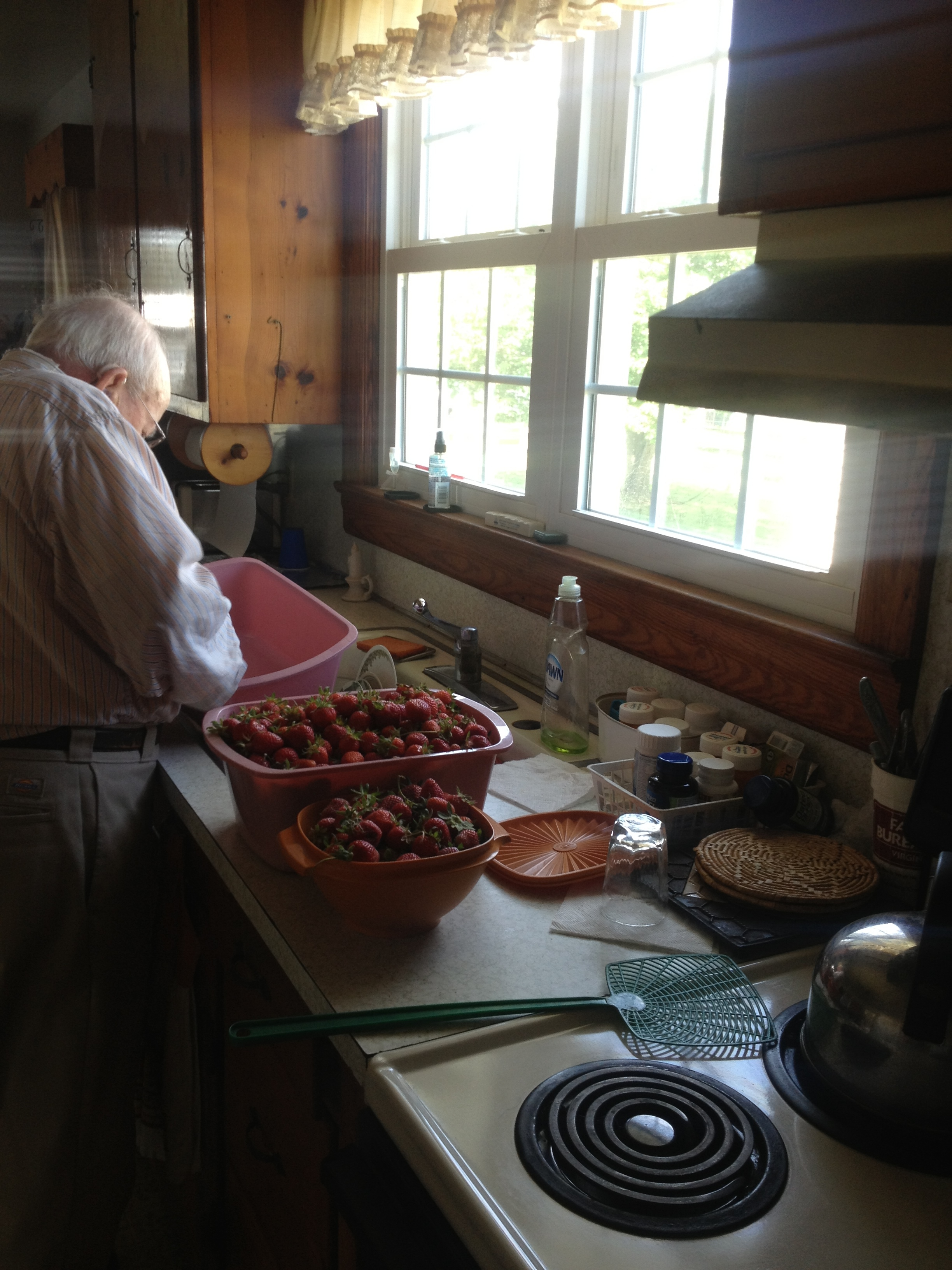 My papa with the retro bowls and strawberries. 2015?