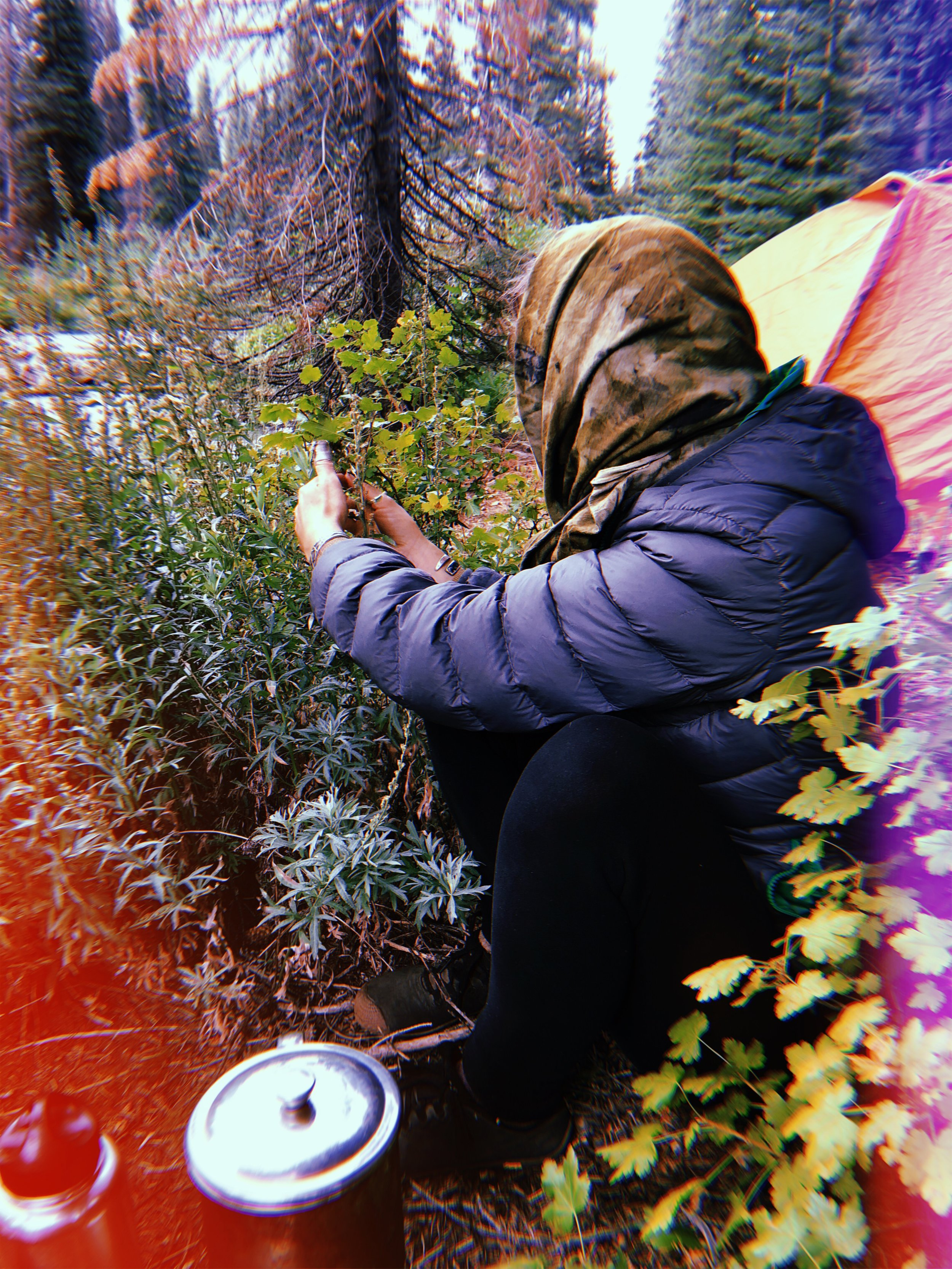 Erin with Mugwort at our first campsite.