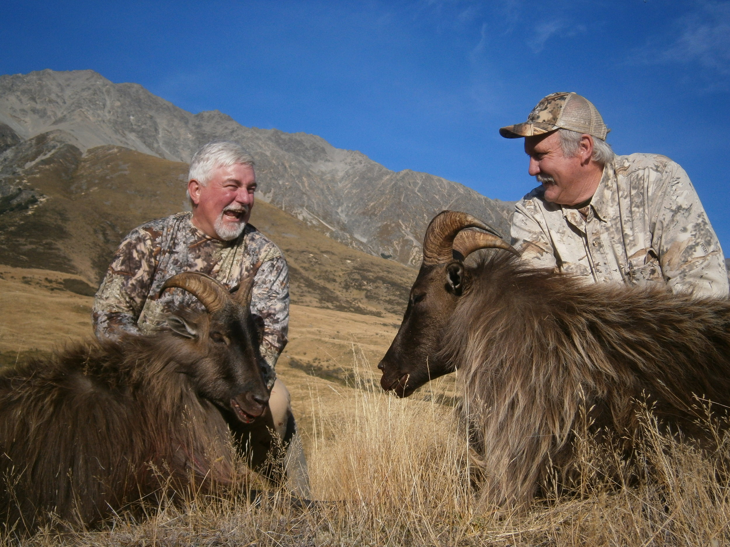Tahr hunting, South Island New Zealand