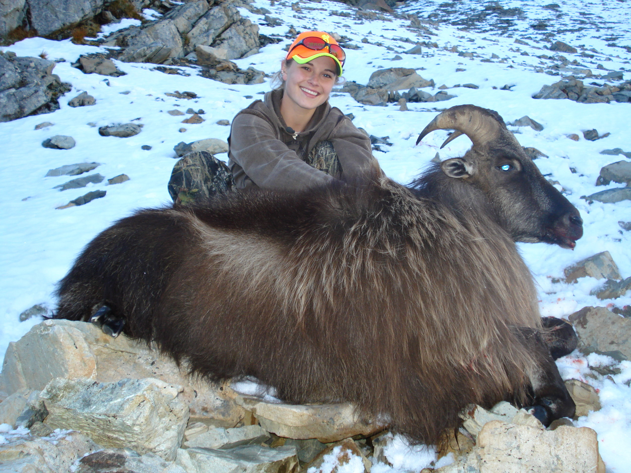 Alpine Tahr Hunt