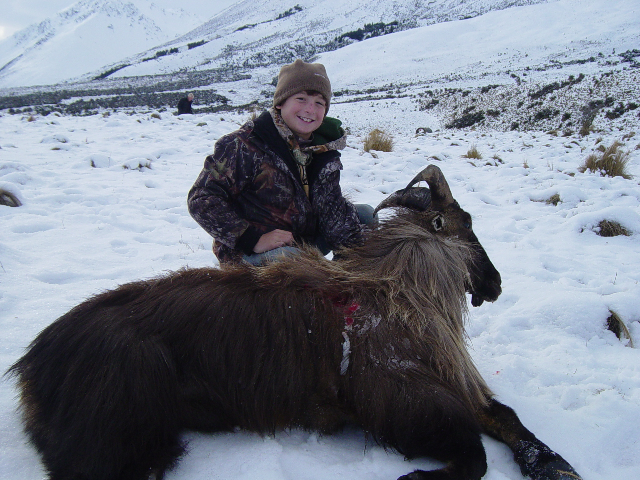 Personalized Tahr Hunting Tours