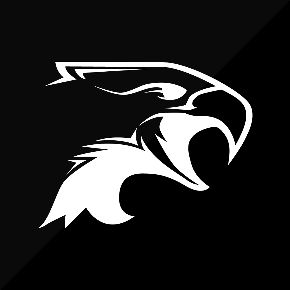 reflectsmallerblackeagle2.png