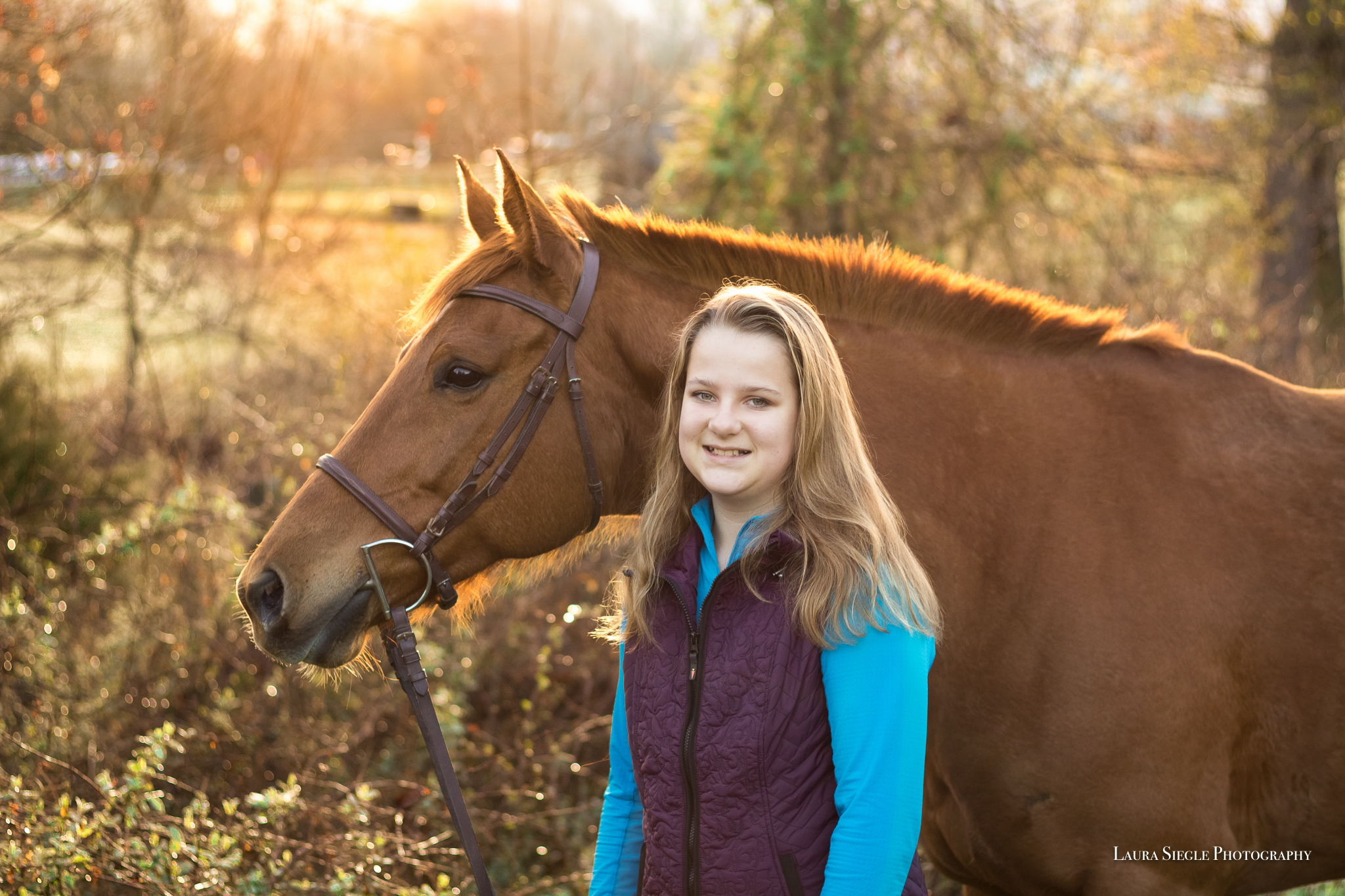 Amelia Virginia Equine Portrait Photography