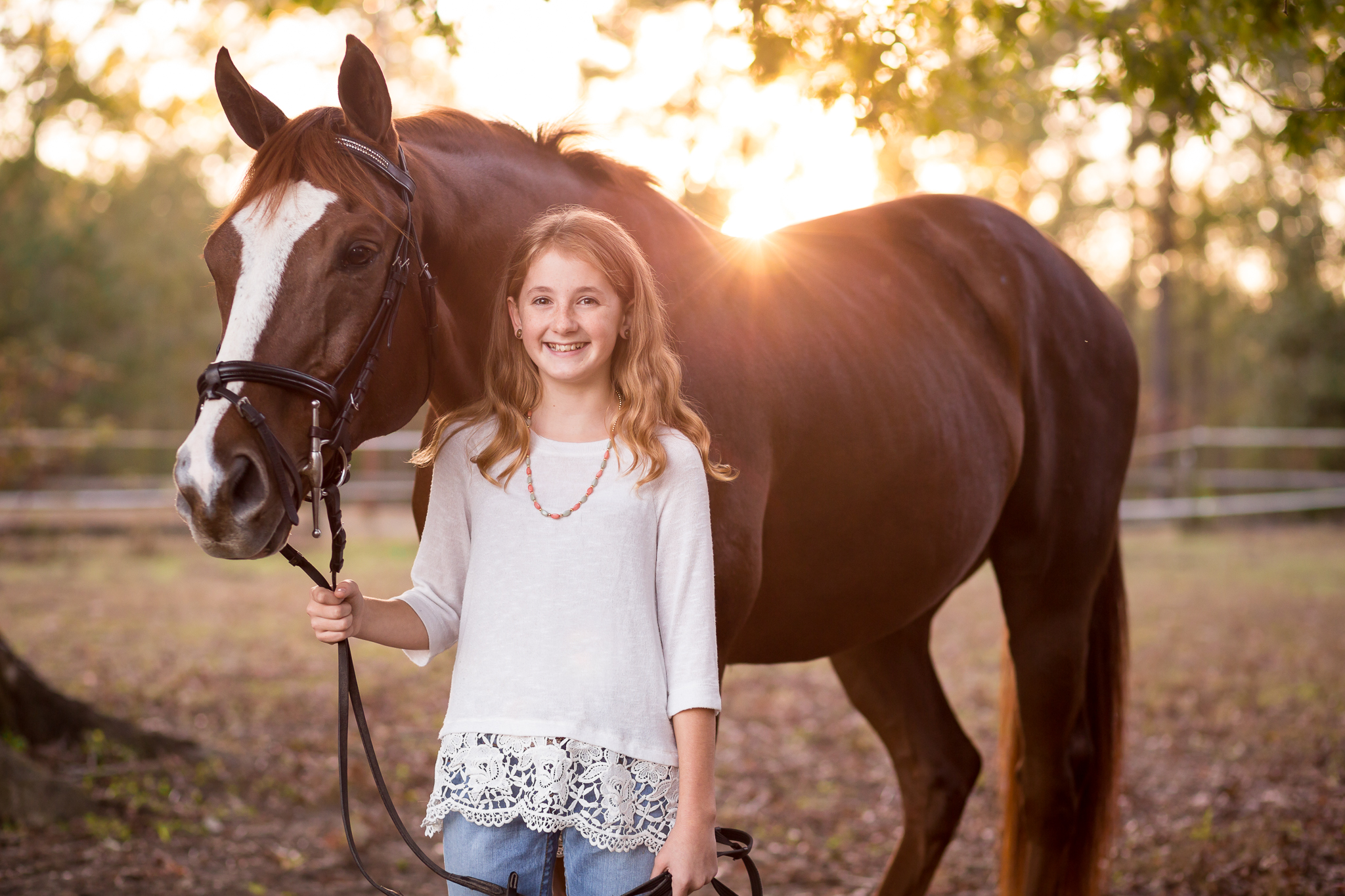 Virginia Equine Portrait Photography Session