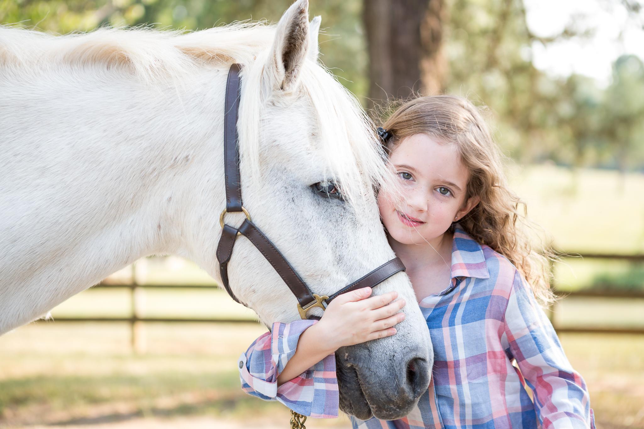 Virginia Equine Horse and Rider Portrait Photographer