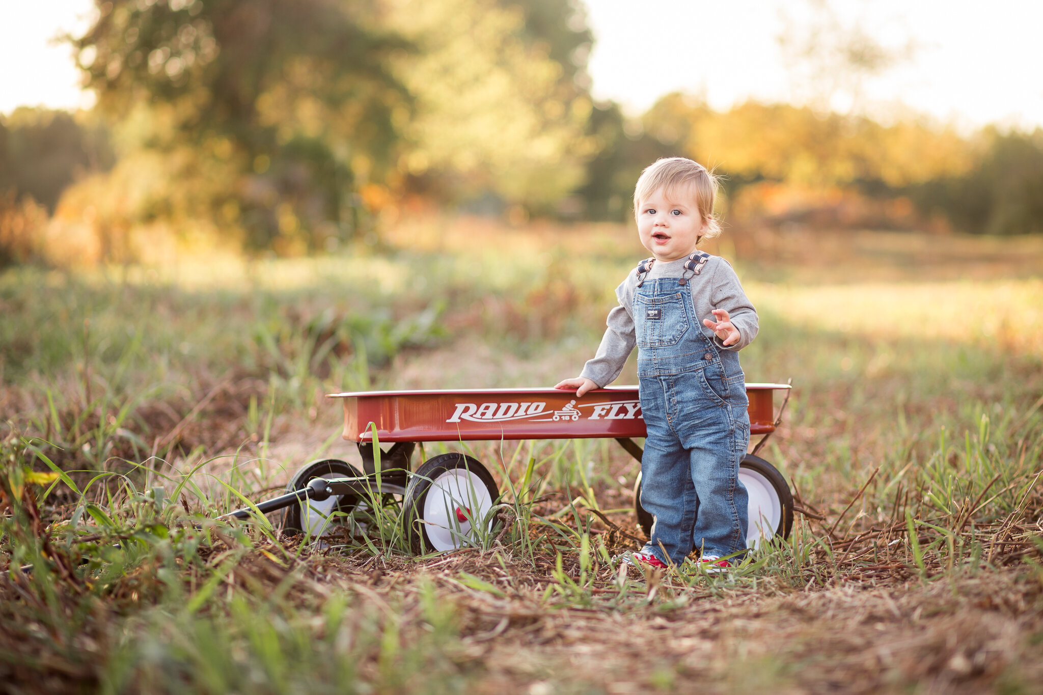 Richmond Virginia Child One Year Photographer