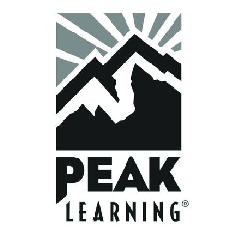 DMS_Logos Peak_Artboard 1 copy.jpg