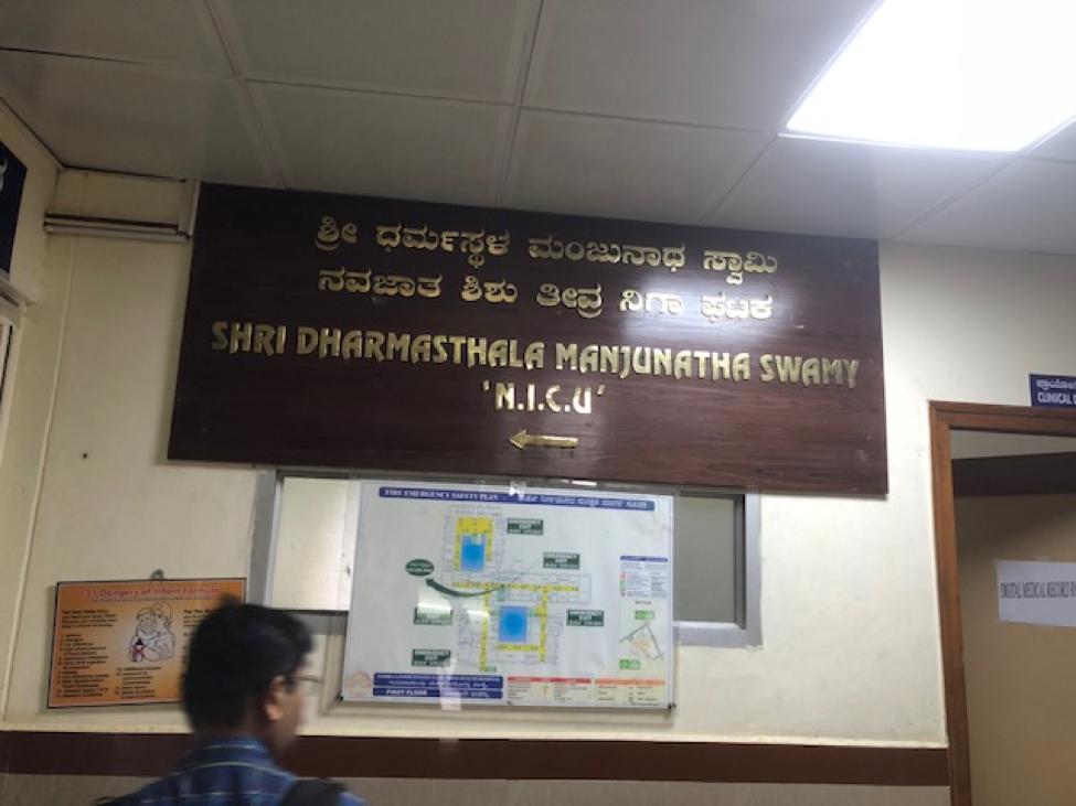 India Nicu.png