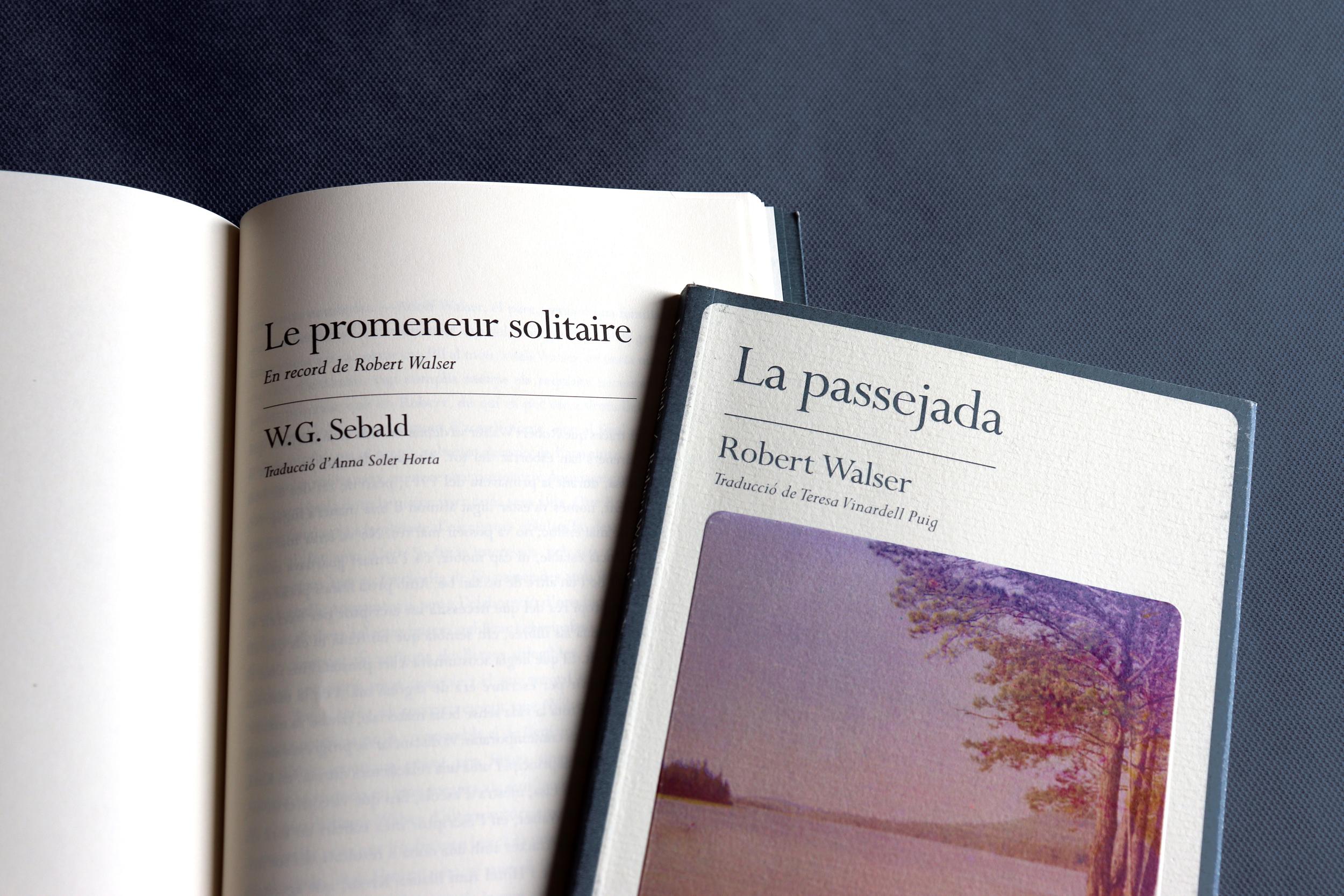 passejada_llibre_7.jpg