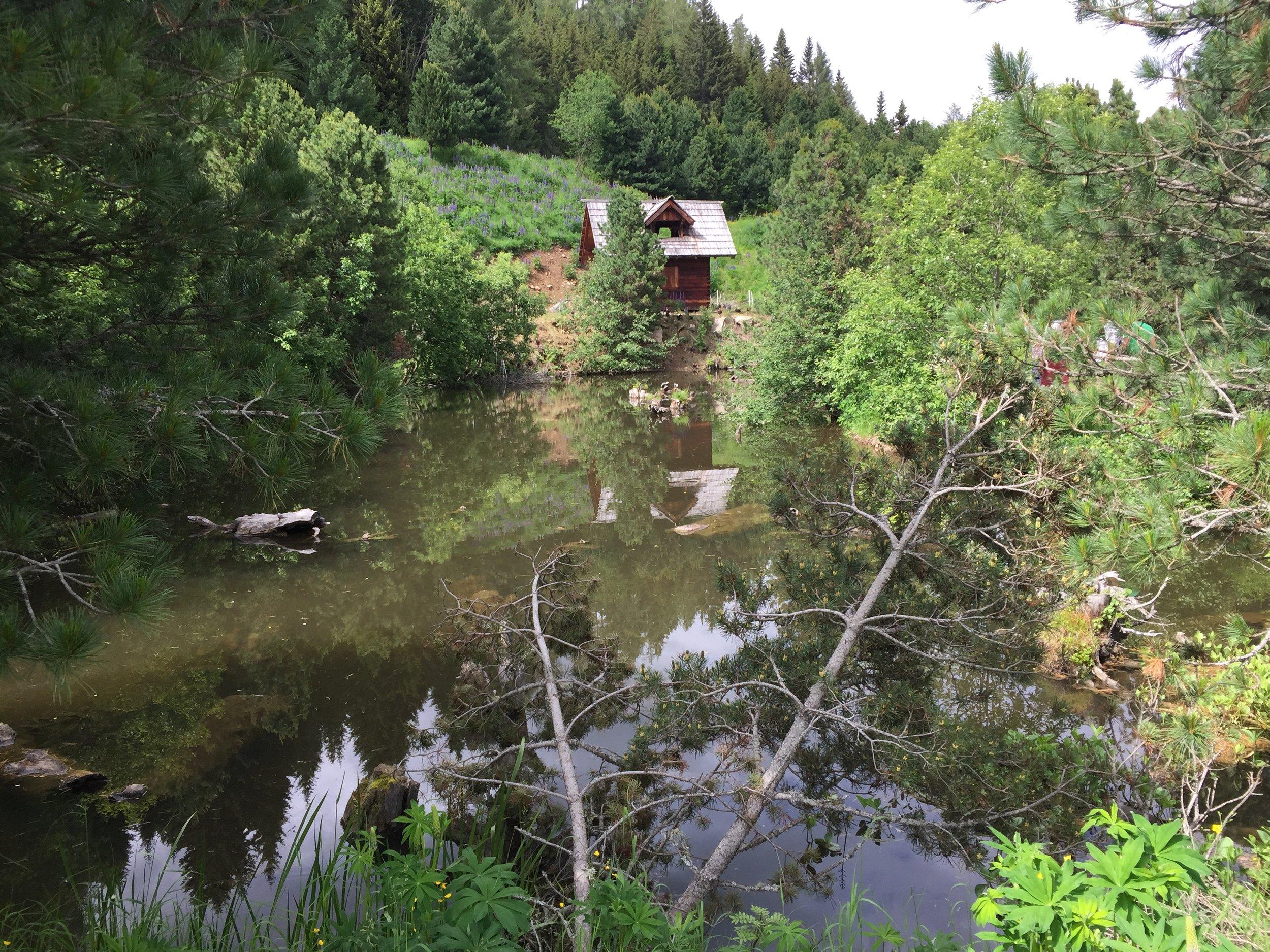jeden z horních rybníků pro chov ryb a raků