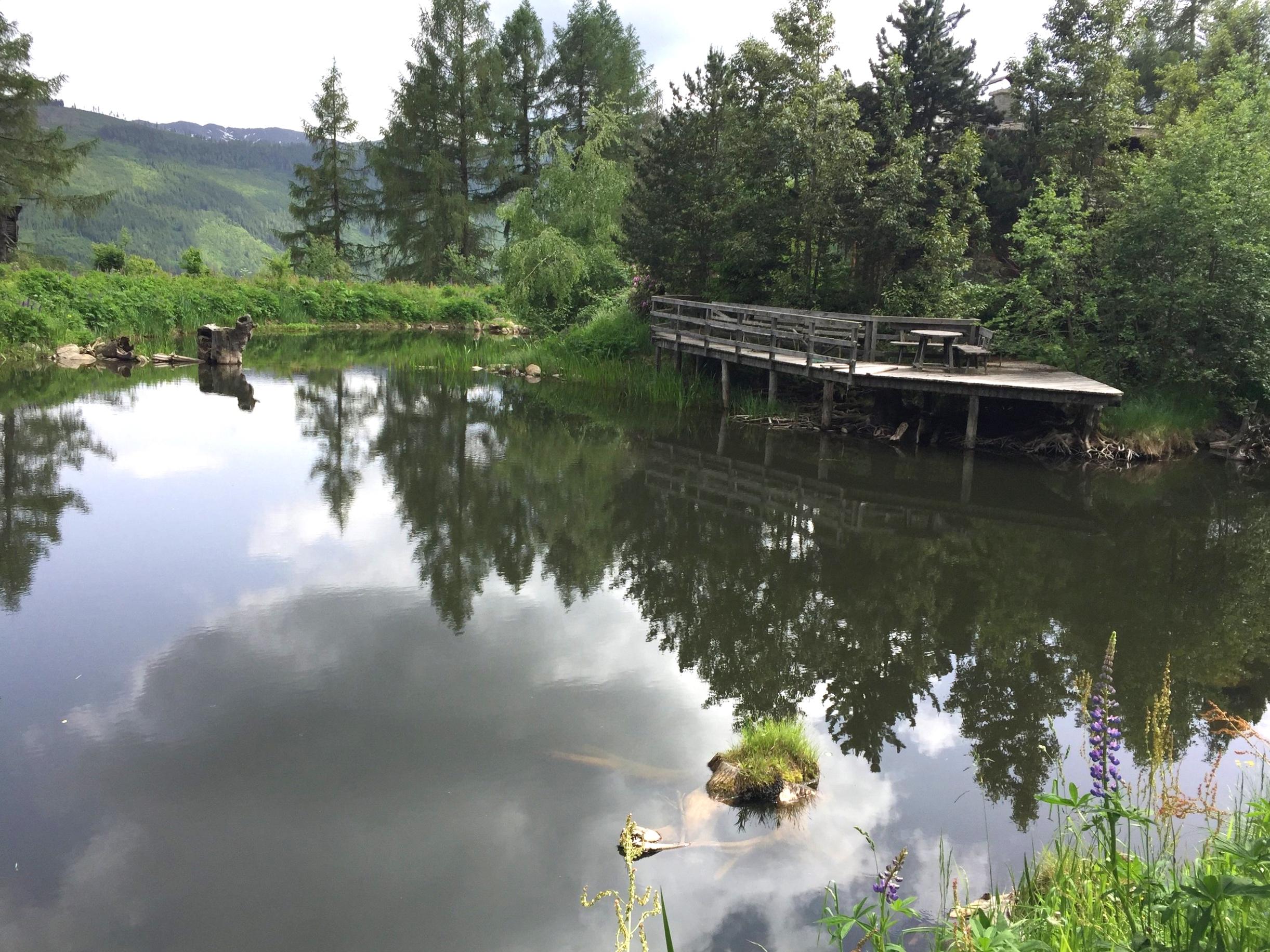 rybníky napájejí místní prameny