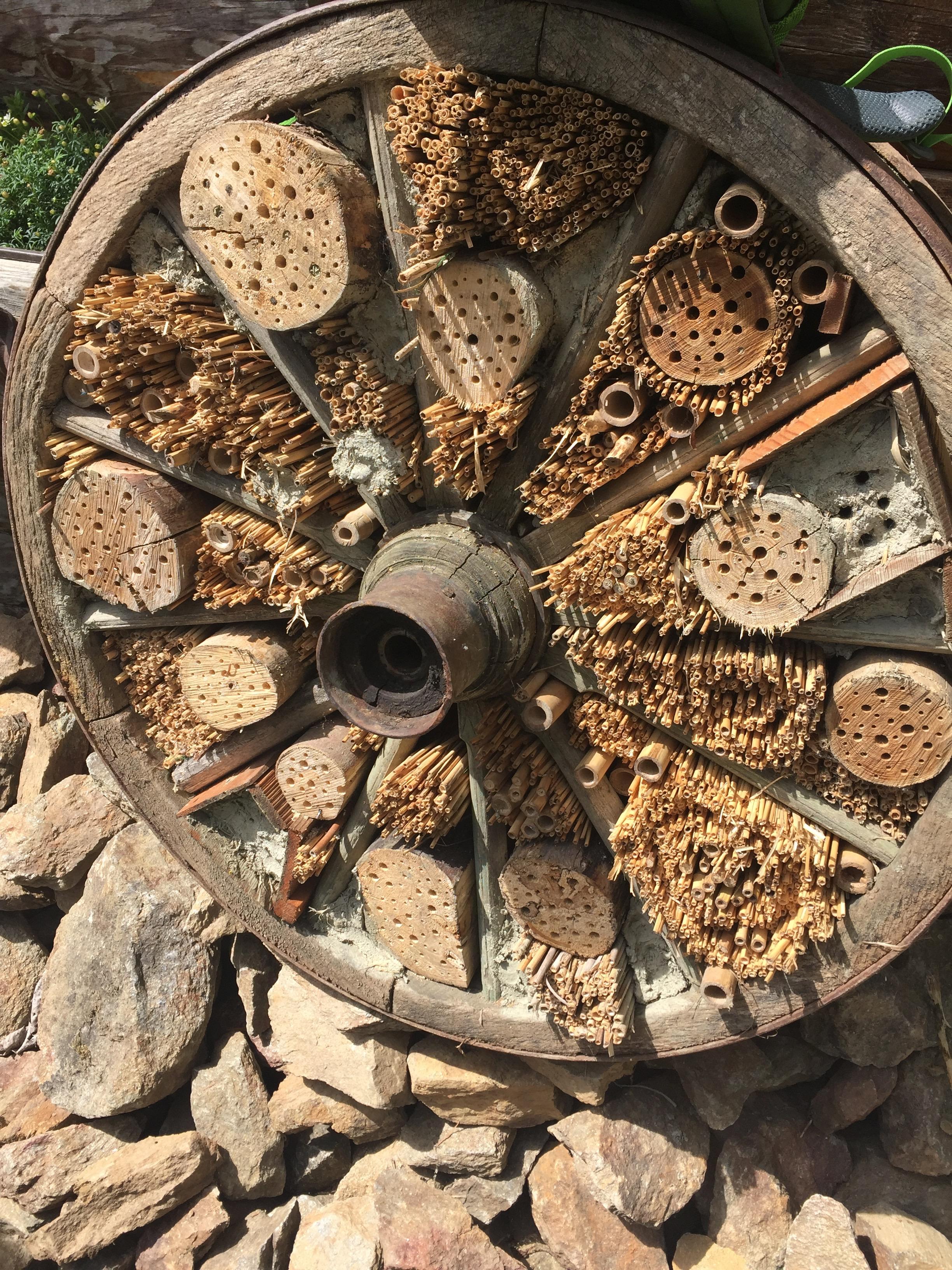 příbytek pro užitečný hmyz