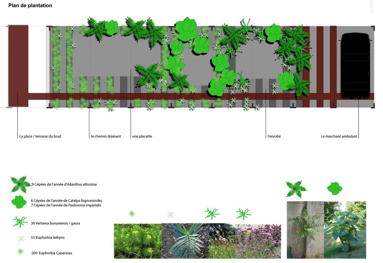 plan-de-plantation-copy.jpg