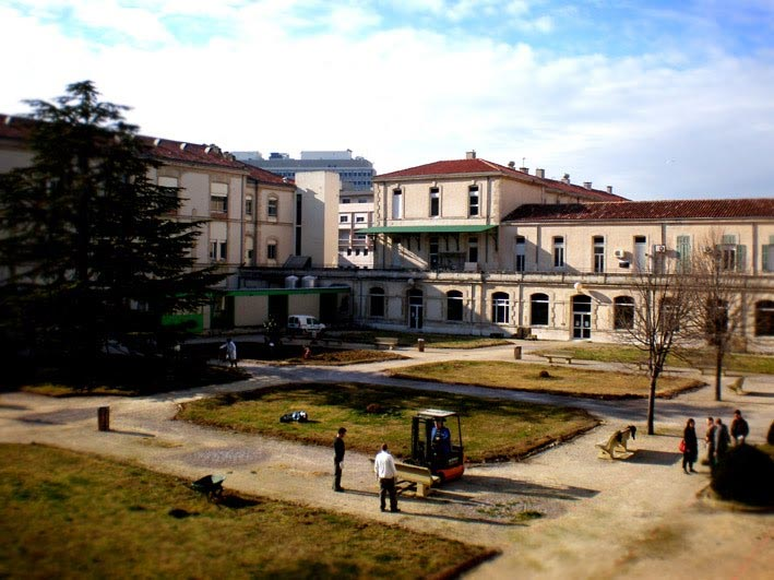 Wagon-landscaping accompagne le projet de réalisation de Vincent, Louise et Morgan, de BLOC paysage dans le cadre de leur Atelier   Pédagogique Régionale, à l'hôpital Sainte Marguerite de Marseille.