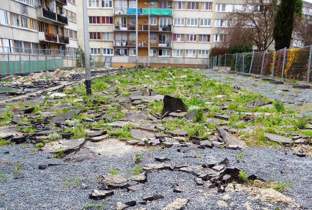 Jardin des Joyeux  - 250317