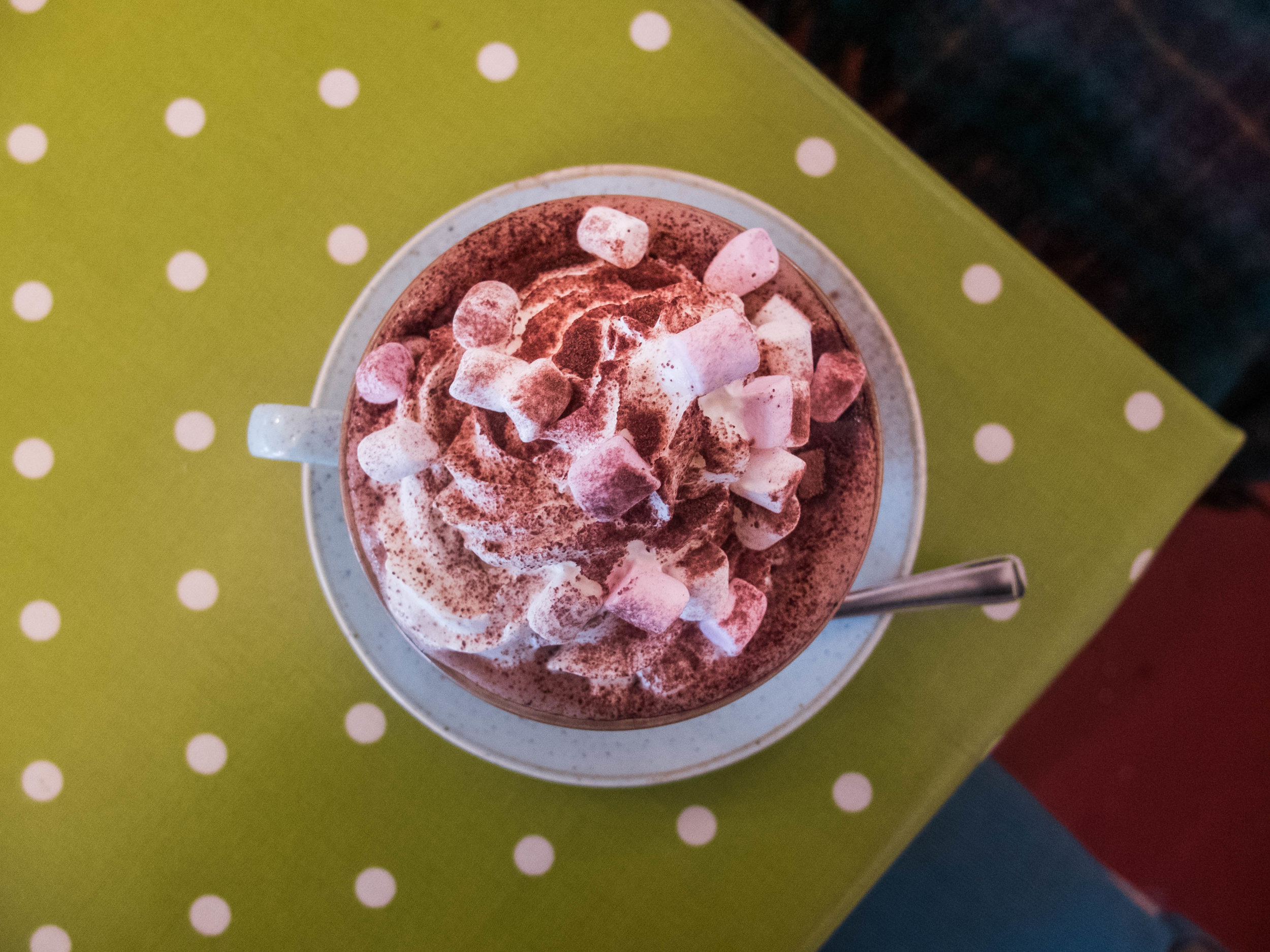 A cup of hot chocolate topped with marshmallows and whipped cream and dusted with chocolate powder