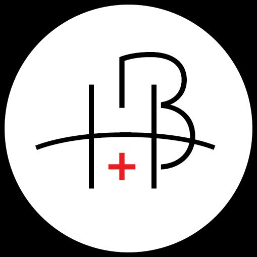 APSI_HealthBridge.png