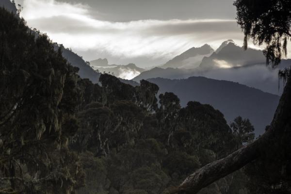 mountain-hiking Kyaninga Lodge