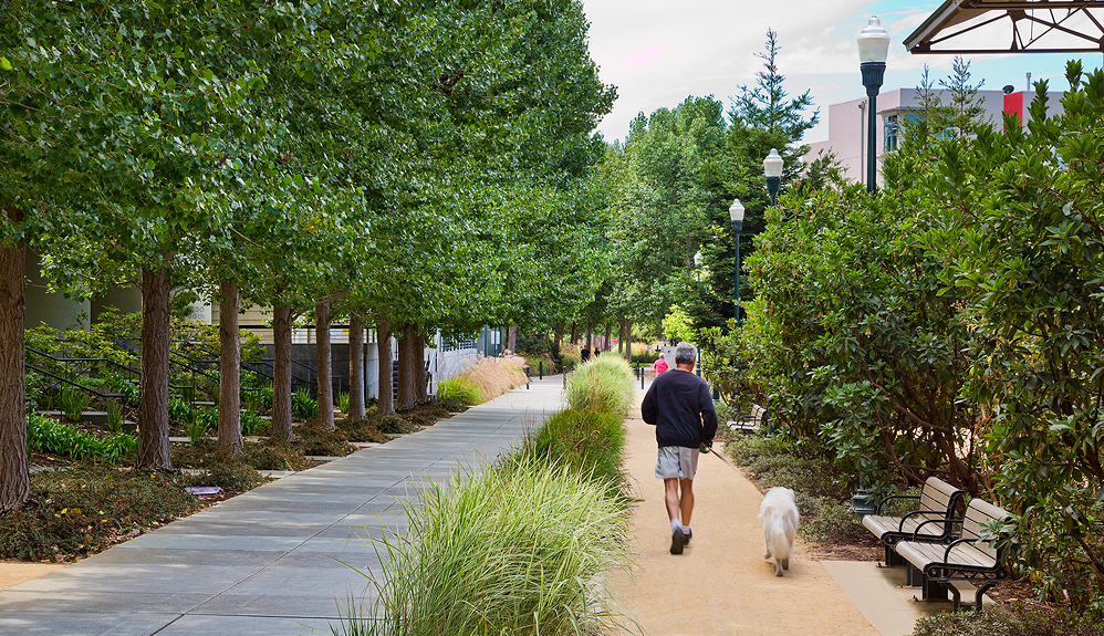 Emeryville's New Streetscape_Credit City of Emeryville.jpg