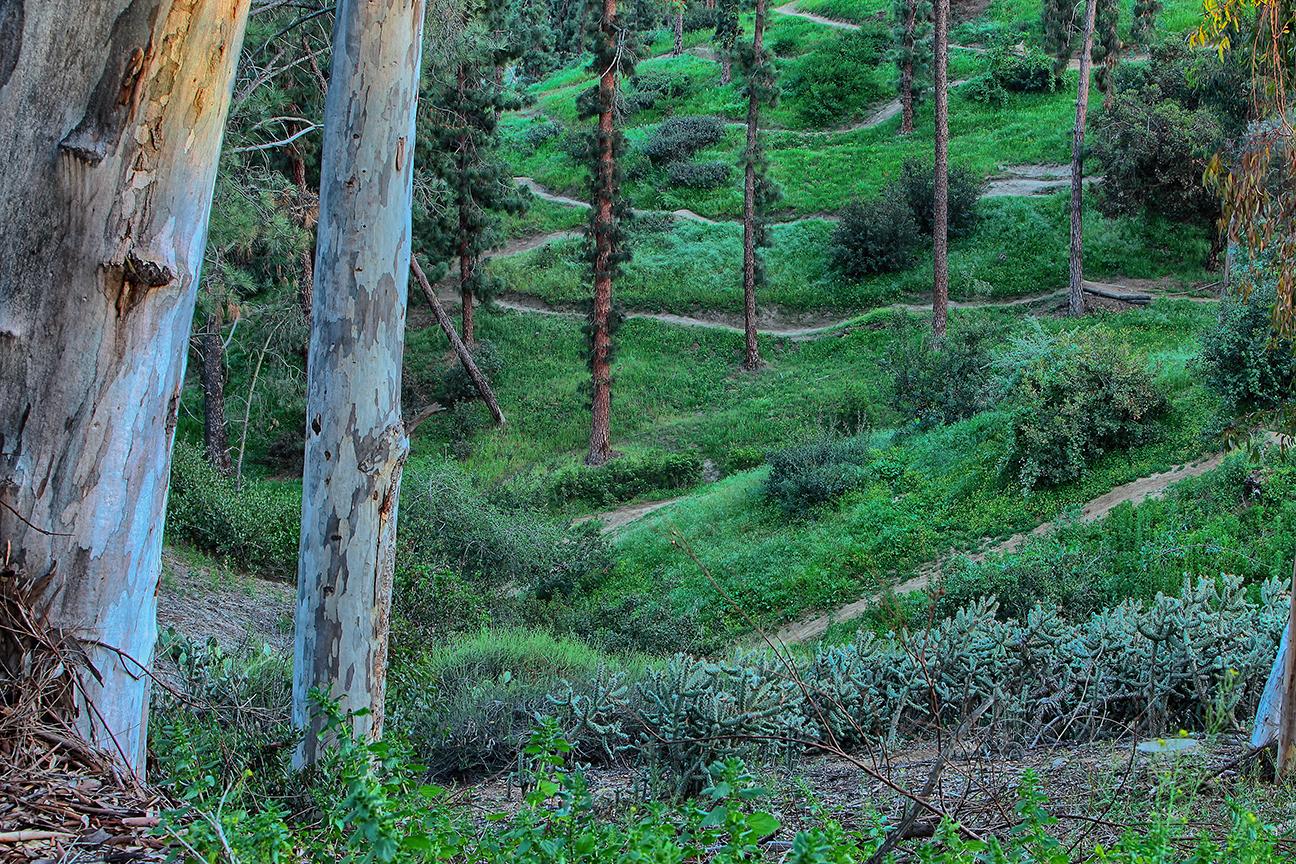 Park Trails - credit Richard Benton.jpg