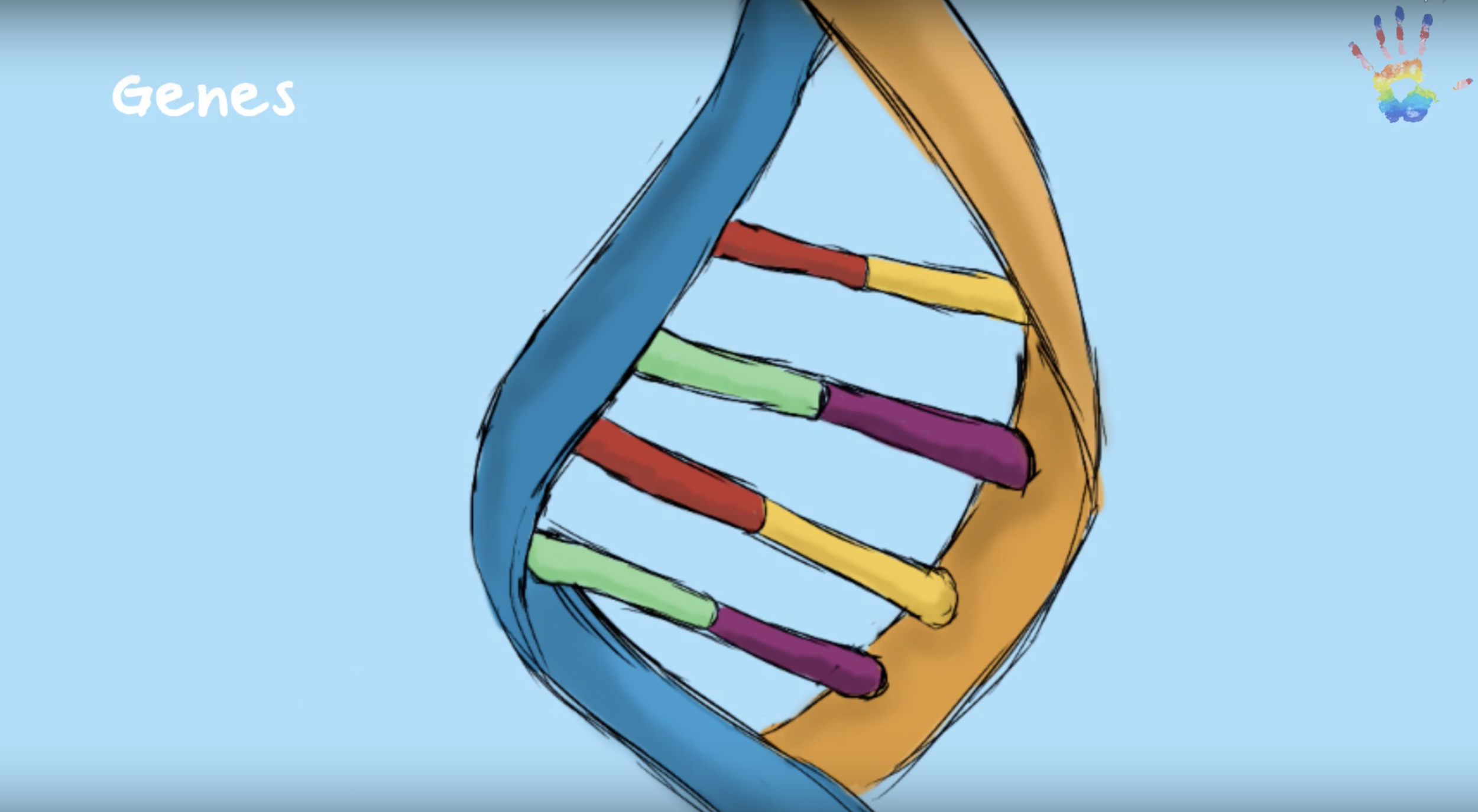 What's a Gene? - Ever wondered why you look so similar to your parents and siblings? Check out this video to learn more!