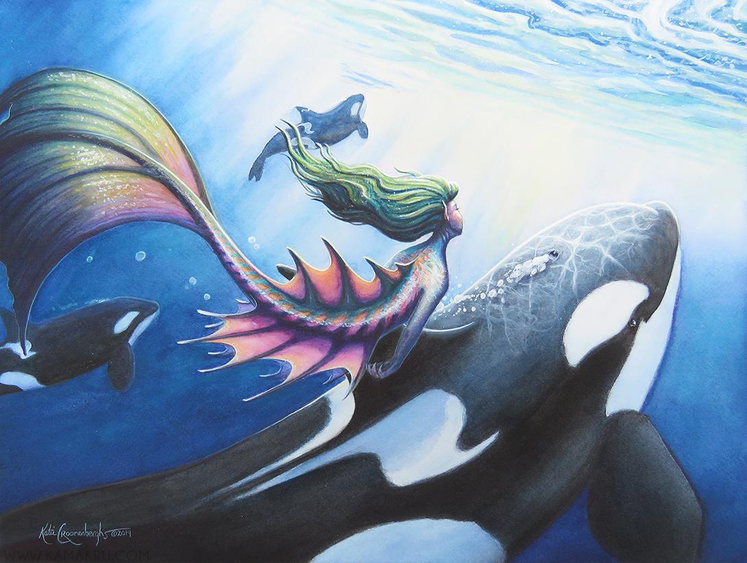 Orca's Journey