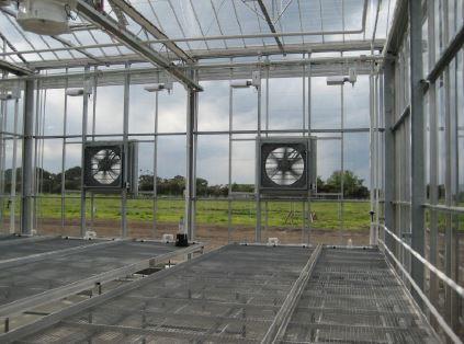 Mesh bottom greenhouses.JPG