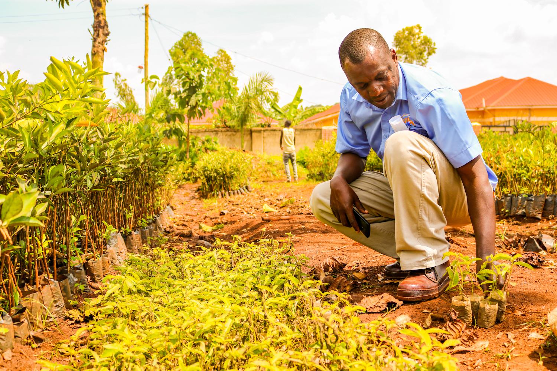 Abraham with his Mvule seedlings.