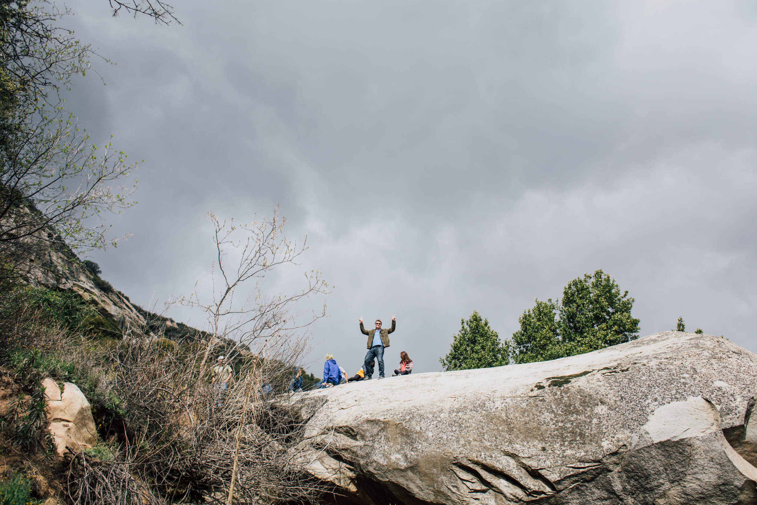 Sequoia-2.jpg