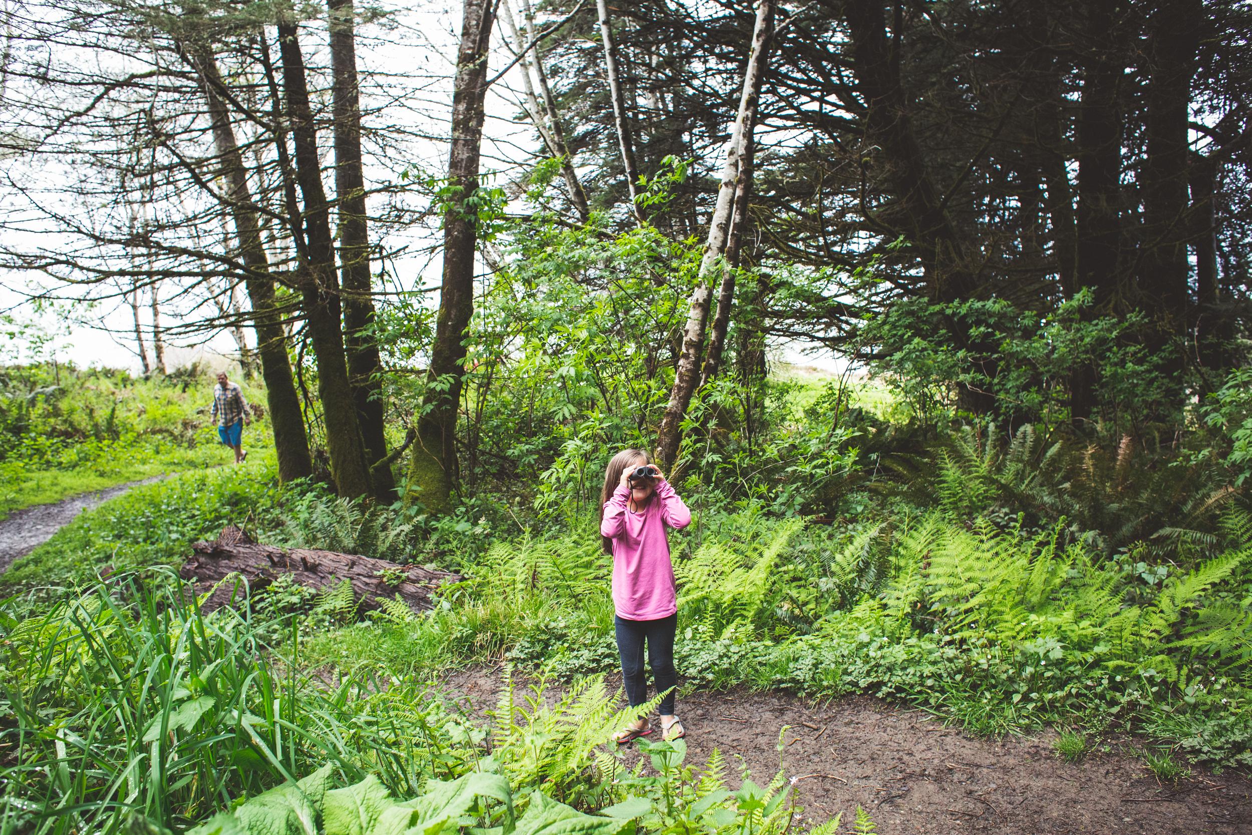 Redwoods-50.jpg
