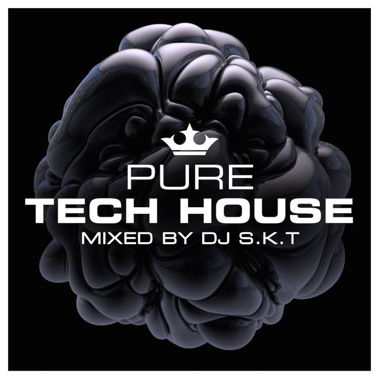 SKT-PureTechHouse.png