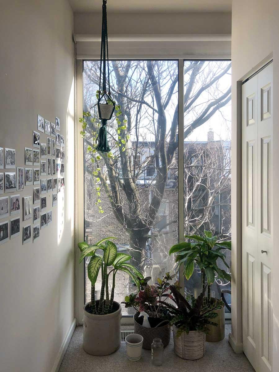Sunny-Day-homestudiolist-Los-Angeles-LA-photoshoot-location-natural-light-southern-california-2.jpg