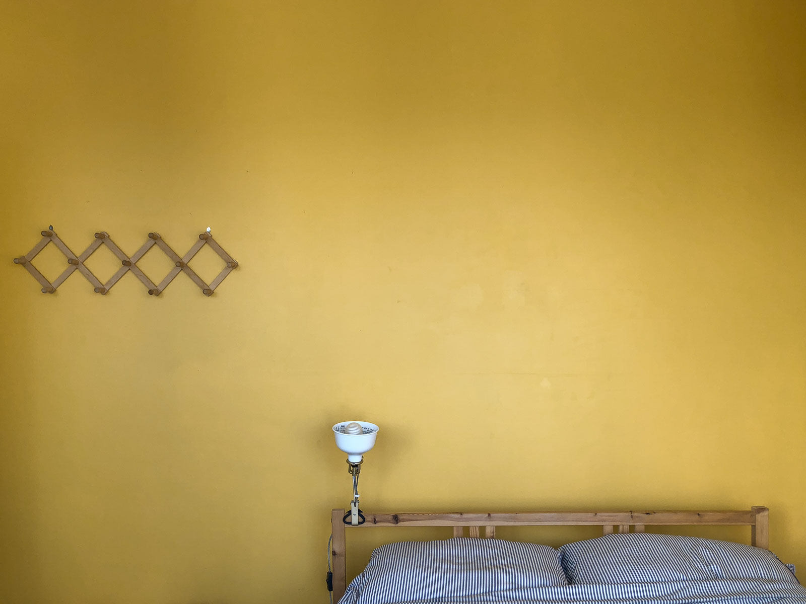 Sunny-Day-homestudiolist-Los-Angeles-LA-photoshoot-location-natural-light-southern-california-4.jpg