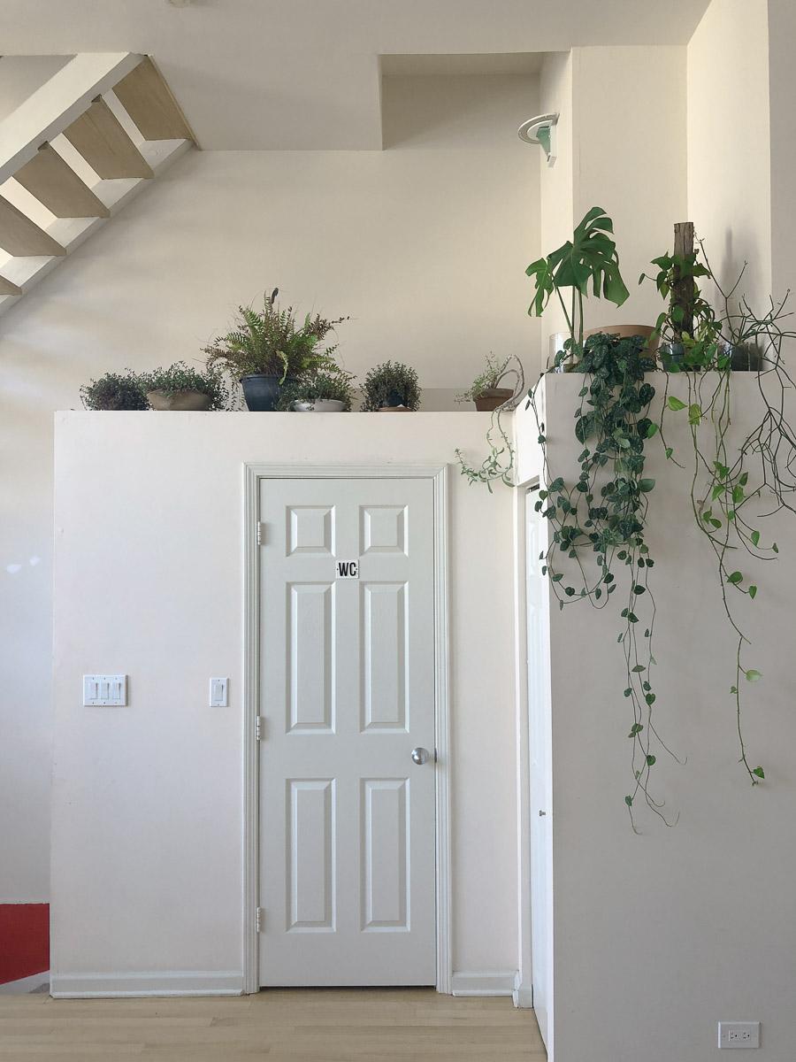 Sunny-Day-homestudiolist-Los-Angeles-LA-photoshoot-location-natural-light-southern-california-7.jpg