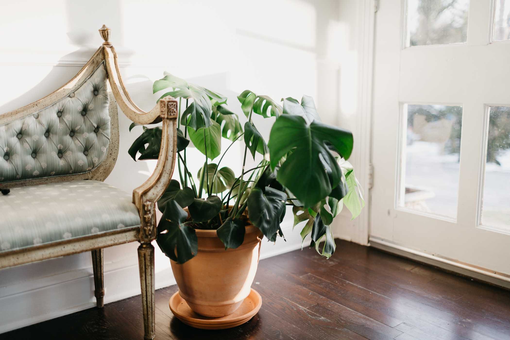 cozy-casa-nashville-tn-natural-light-studio-photography-ideas-lifestyle-photographer-photography-33.jpg