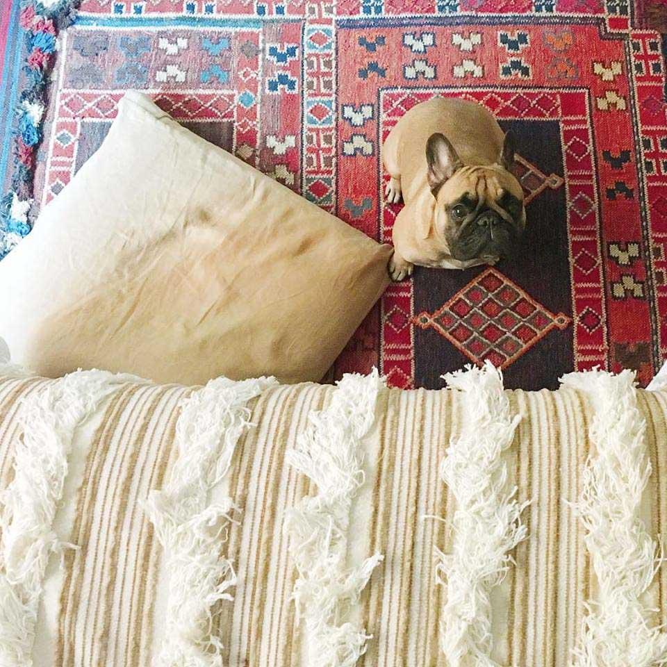Boho-Charm-michigan-natural-light-photography-studio-lifestyle-photo-ideas-indoor-photoshoot-location-17.jpg